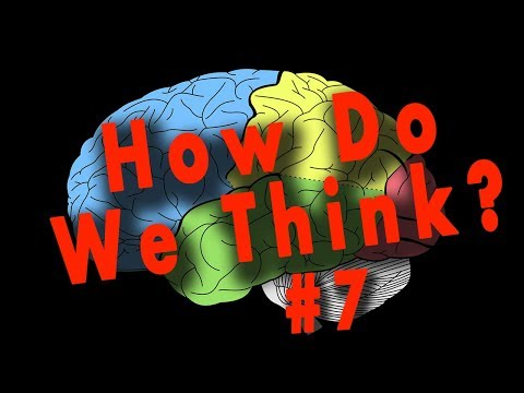 What happens when we think? (The Power of your Brain) - IDEA #7