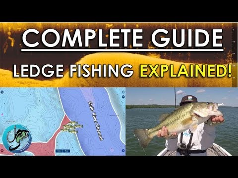 Complete Guide To Offshore Ledge Fishing | Sonar, Maps, Lures And More!