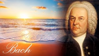 Classical music for studying and concentration | bach study music | relaxing studying music