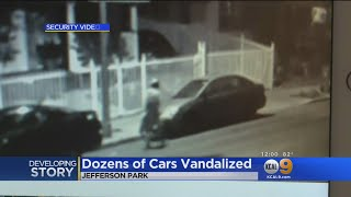 Homeless Woman In White Robe Arrested For Slashing Tires On Nearly 100 Cars