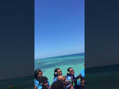 Fiji Day 2017 (Plantation Island Resort)