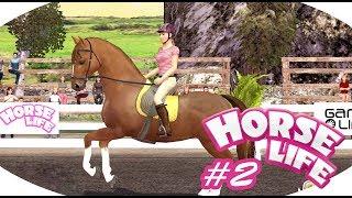 Horse Life 2 #2 - Mój koń mnie nienawidzi!