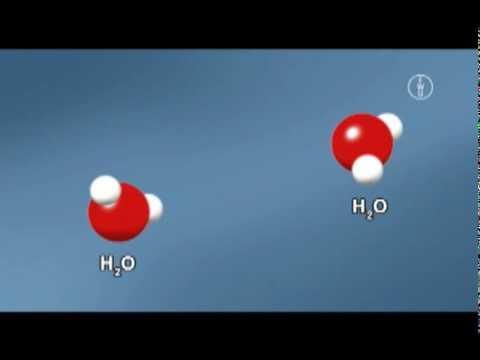 FWU - Säure und Base III: Ampholyte, pH-Wert und Neutralisation ...