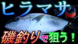 【磯釣り】離島の磯釣りで海のスプリンター『ヒラマサ』を狙う!【カゴ釣り】
