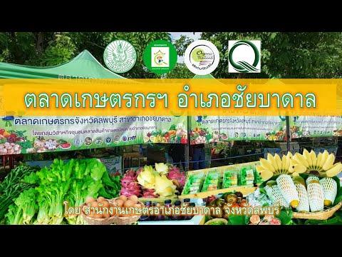 ตลาดเกษตรกรจังหวัดลพบุรี สาขาอำเภอชัยบาดาล