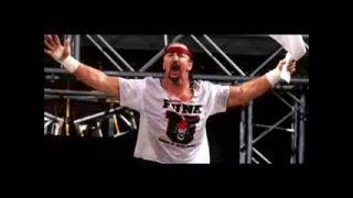Wrestling Observer Interviews Terry Funk 2004 (RARE)