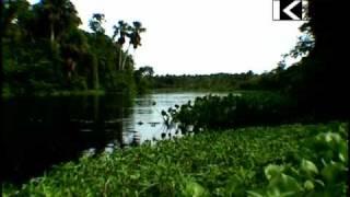 Rio Morichal Largo River.mp4