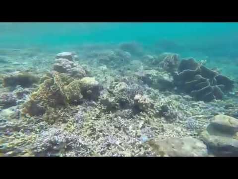 Trip to Tanjung Karang Beach | Donggala | Indonesia | 2015