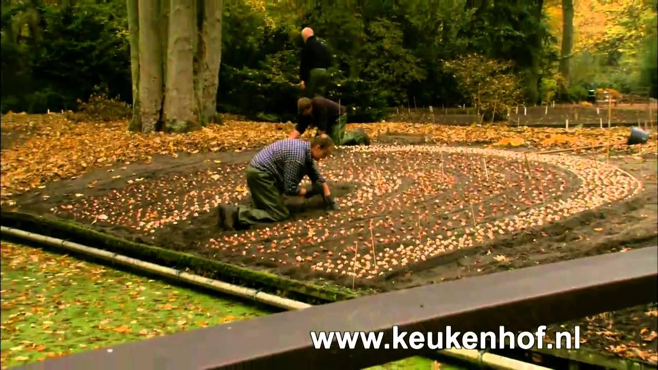 Planting more than 7 million bulbs in Keukenhof - YouTube
