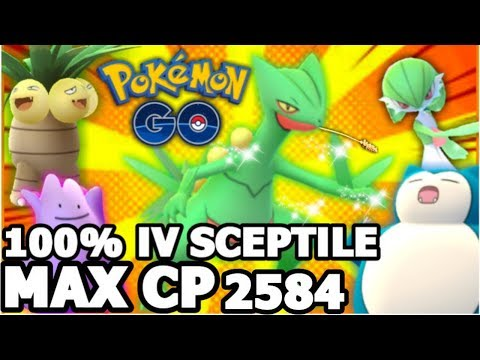 100% IV MAX CP 2584 SCEPTILE IN POKEMON GO | THE POWER OF COMPLETELY MAXED SCEPTILE