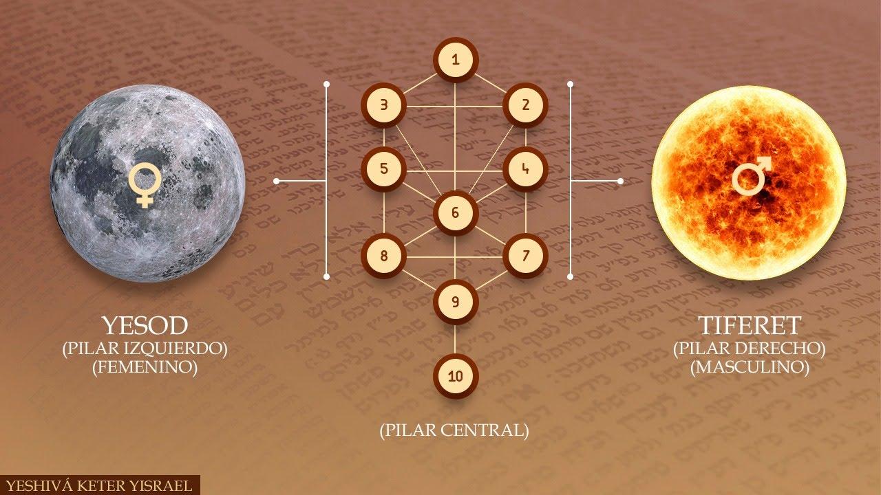 El Árbol de la Vida, y las Multidimensiones Masculino y Femenino/ Introducción al Zohar Parte 3 5780