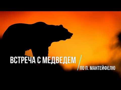 Диктант по русскому языку.  9 класс.  Встреча с медведем. #диктант9класс #диктант