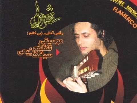 siamak rafiee - flamenco guitar player - world music fusion guitar & dulcimer santoor