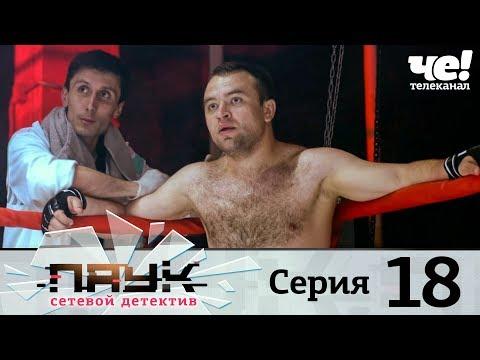 Паук | Сезон 1 | Серия 18