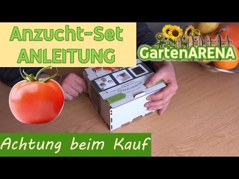 anzuchtset-anleitung-für-tomate- -worauf-man-schon-beim-kauf-achten-sollte