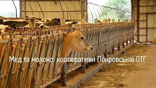 Децентралізовані Мед та молоко кооперативи Покровської ОТГ