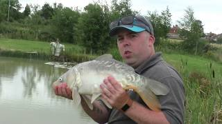 Big Carp In The Margins With The Shimano Beast Master