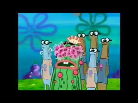 Jellyfishes Sting Kevin the Sea Cucumber's Eyes for 10 Hours