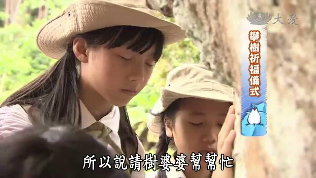 【呼叫妙博士】20140815 - 搶救老樹大作戰 - YouTube