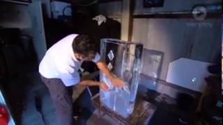 Angel Ice Sculptures on Totally Wild TV Show