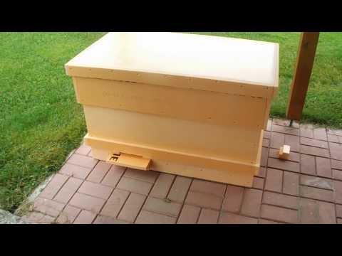 Улей-лежак на 24 рамки из