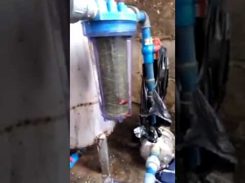 Were borehole use to produce pure water in Nigeria