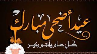 تهنئة عيد الأضحى المبارك 💕 كل عام وحضراتكم بخير/شعر عن العيد @سناء مرجان _ sanaa morgan