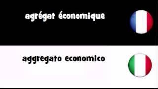TRADUCTION EN 20 LANGUES = agrégat économique