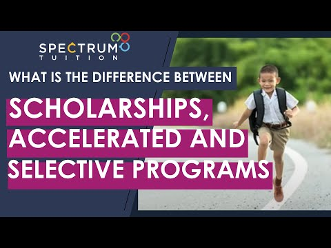 What is the difference between scholarships, accelerated programs and selective school programs?