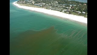 Another reason Florida's Red Tide is so bad this year: Pollution from the Mississippi River