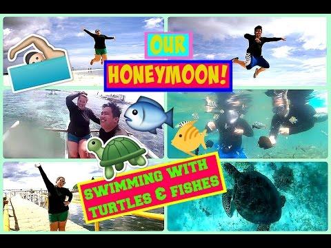 DAY 2 💕 BALICASAG, FISH FEEDING & TURTLES! 💕 OUR HONEYMOON! 💕 PhillineInaVlogs