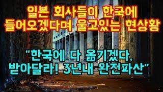 """일본 회사들이 한국에 들어오겠다며 울고있는 현상황  """"한국에 다 옮기겠으니 받아달라, 3년내 완전파산"""""""