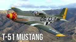 Titan T-51 Mustang Isn't Your Average KIT Plane