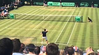 Davis Cup Andy Murray wins a great point