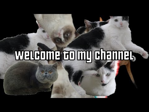 Welcome To Snafs' Channel!
