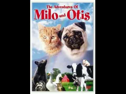 "The Adventures of Milo and Otis ""Walk Outside"""