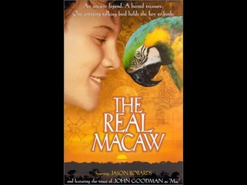 Opening To The Real Macaw 2000 VHS