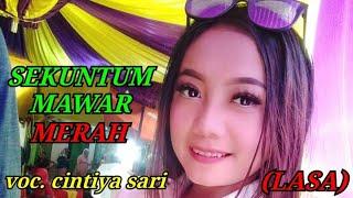 Download Mp3 Sekuntum Mawar Merah - Voc. Sintia Sari - Lasa Layungsari Kutasari