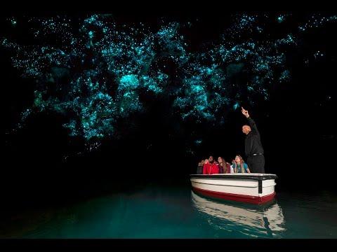 Discover Waitomo Glowworm Caves | New Zealand