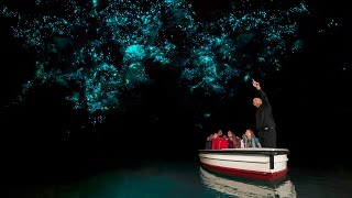 Discover Waitomo Glowworm Caves