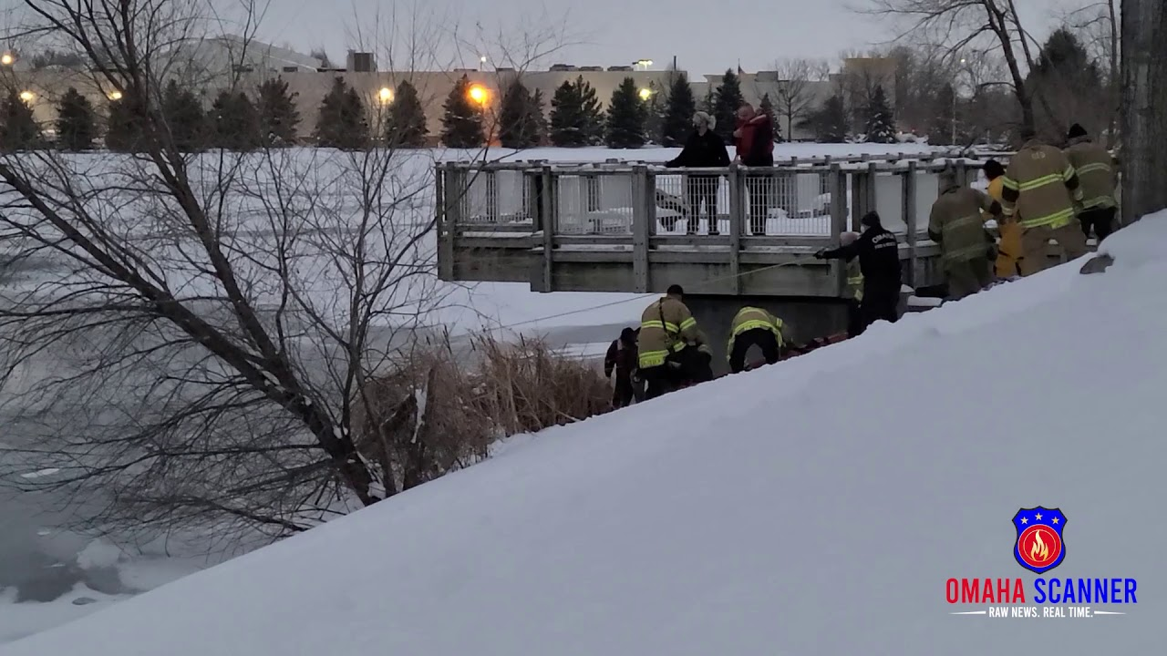 Heart stopping video captures first responders rescuing two people, dog from frigid pond