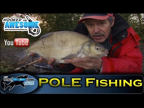 POLE FISHING for beginners - Bream - TAFishing Show