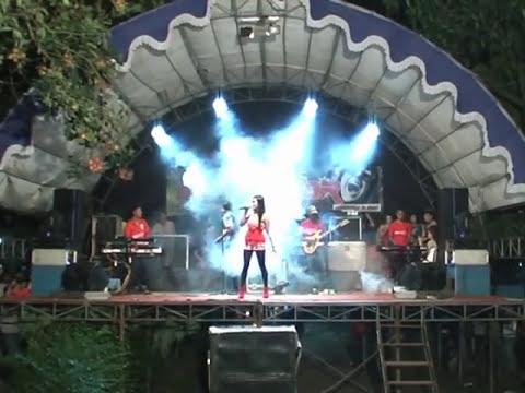 Dil Laga Liya Danisa Faradila NEW STAR Musik Dangdut Terbaru Jepara
