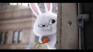 Тайная жизнь домашних животных (2016)— русский трейлер