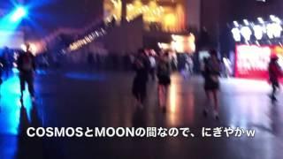 CDJ(カウントダウンジャパン)15/16の初日のCOSMOSエリア前!