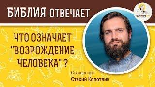 """Что означает """"возрождение человека"""" ?  Библия отвечает. Священник Стахий Колотвин"""