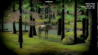 TheHunter game- Albino moose, Alive and well