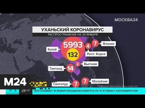 В Финляндии зафиксирован первый случай заражения коронавирусом - Москва 24