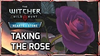 Witcher 3: Take the Rose from Iris + Olgierd