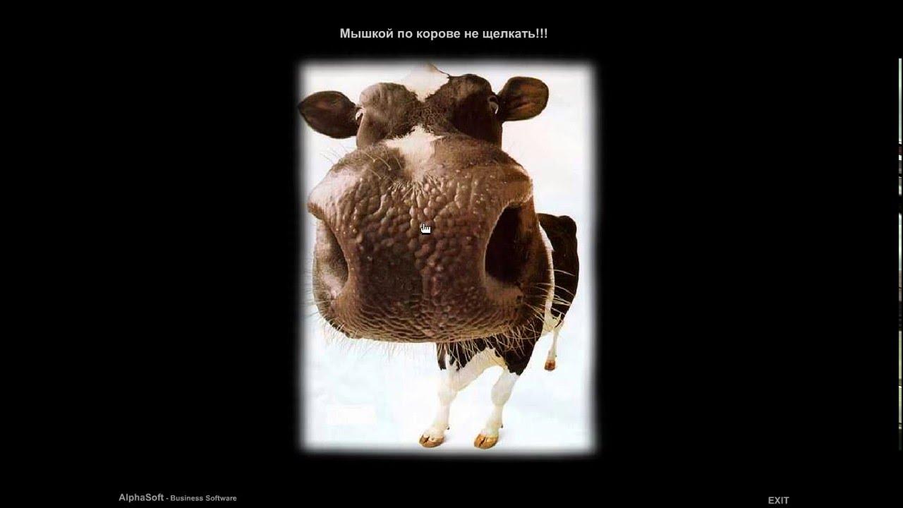 мельче, рева-корова картинки для режиссером